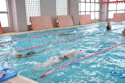 swiming1